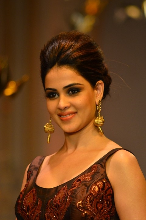 Genelia-d-souza-wallpapers-30-HD-Pics-nice-hairstyle