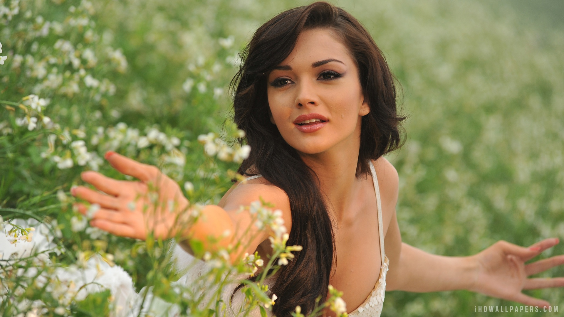 Amy Jackson Hd Photo Download
