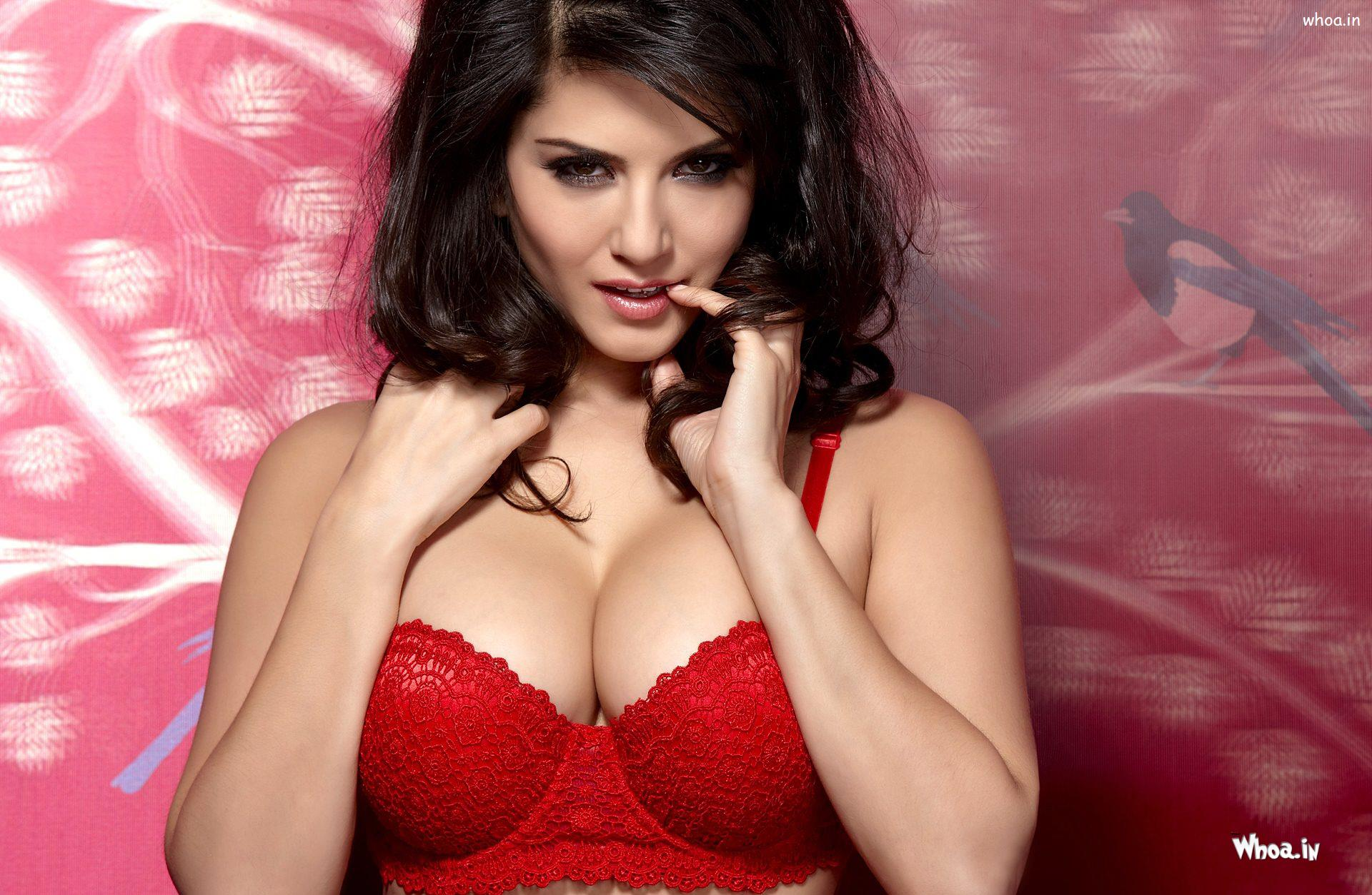 Sunny leone sexy hd download-8008